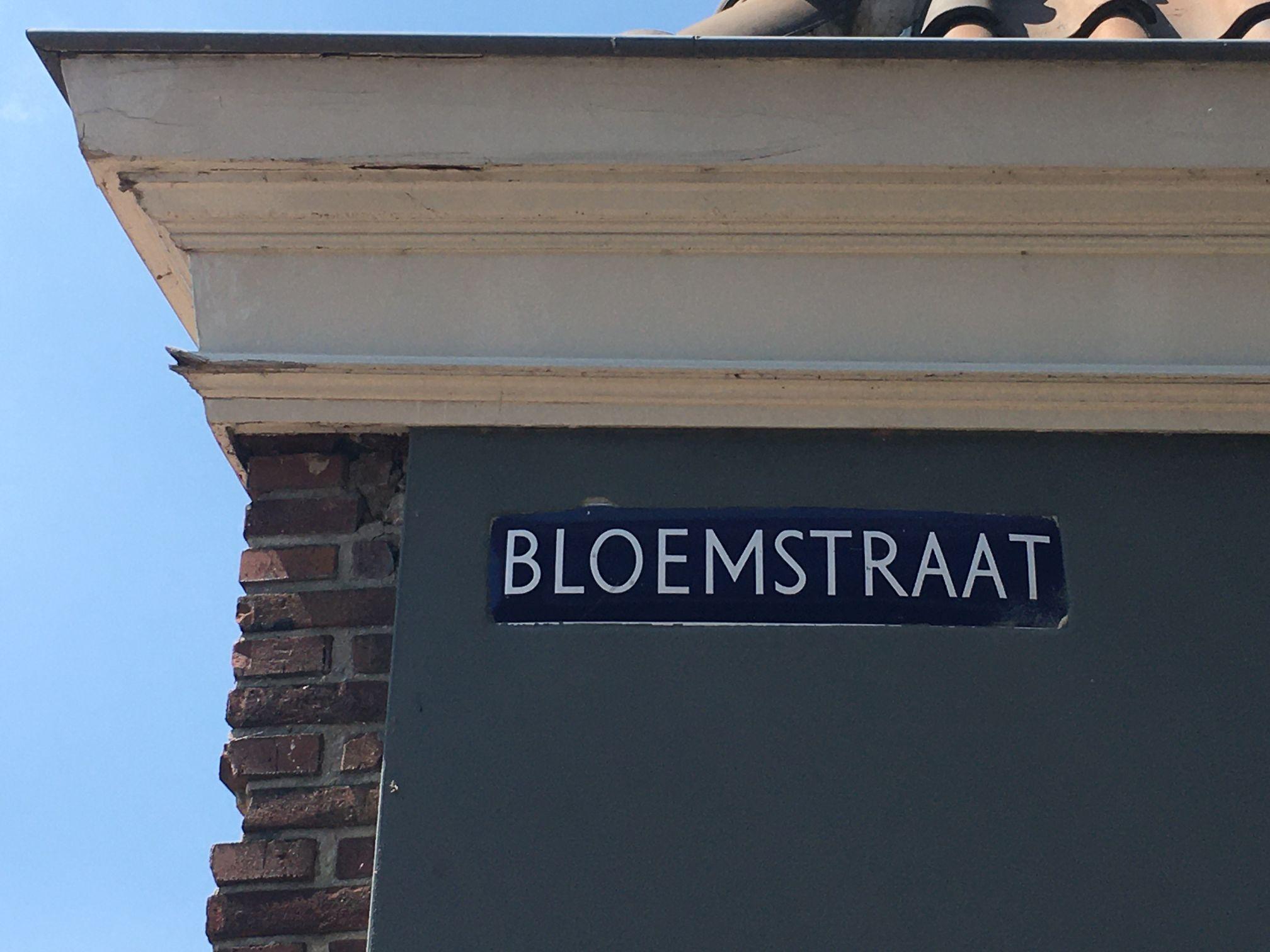Tijs Blom van Alkmaar